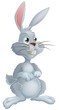 White rabbit cartoon character