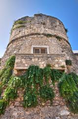 Bridge Tower. Peschici. Puglia. Italy.