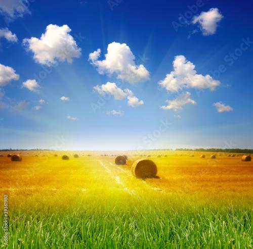 Fototapeten,ackerbau,ballen,wolken,staat