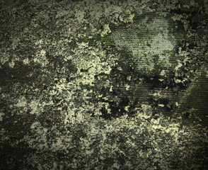 old molded wall texture or background