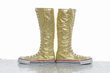 Pair of female sneakers,