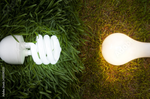 Energy Saving Light Bulb Compared to a Conventional
