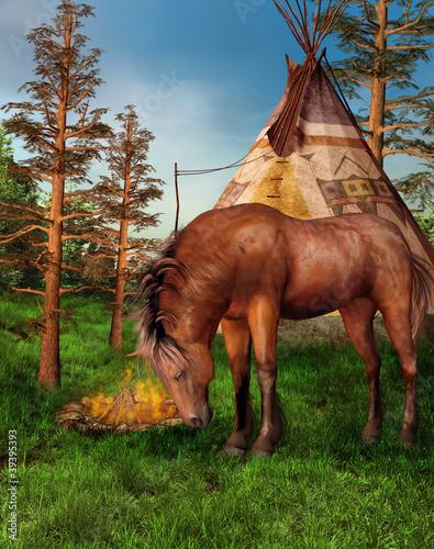 In de dag Indiërs Koń na tle indiańskiego obozu