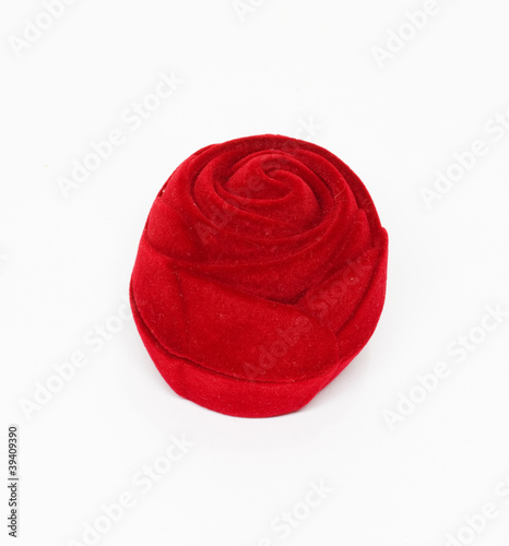 Red rose on the white background