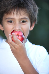 Young boy eating a nectarine