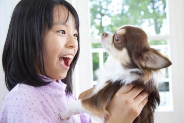チワワを抱く笑顔の女の子