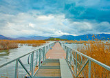 Bridge in the beautiful lake small Prespa in Northern Greece poster