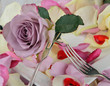 Romantic place setting with silverware and roses for lovers