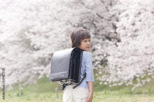 桜の下で振り返り微笑む小学生男子