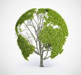 Fototapeta eko - energia - Drzewo