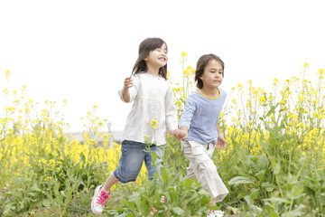菜の花畑で手を繋ぎ歩く男の子と女の子
