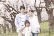 桜の下で微笑む家族