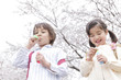 桜の下でシャボン玉を吹く男の子と女の子