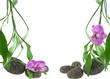 décor zen, orchidée, bambou, galets