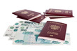 Passports of Russian Federation