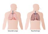 raucher lunge und gesunde lunge vergleich eps illustration
