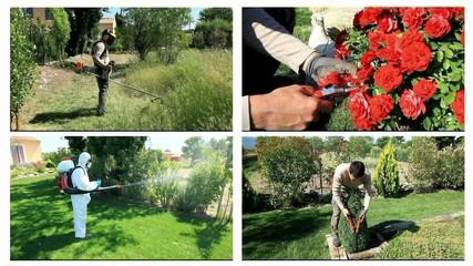 l' entretien de votre jardin