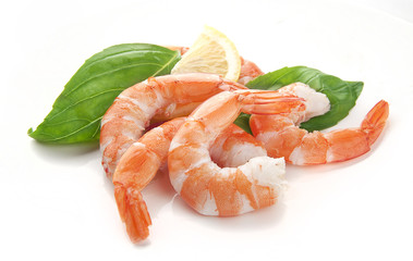 hot-water shrimps