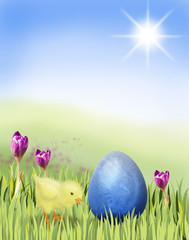 Easter chicken with blue egg on a meadow