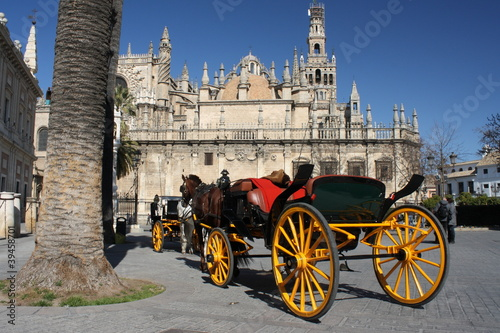 carriage waiting for tourists in Seville