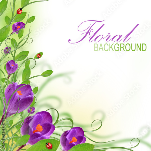 purple flower design with copy space