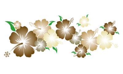 Hibiskus - Blüten