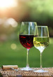 Two glasses of the white and red  wine