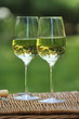 Two glasses of the white wine