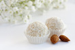 White sweet coconut truffles