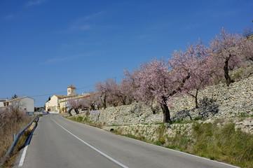 Fageca village