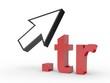 3D Domain tr mit Pfeil