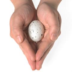 Piccolo uovo nelle mani