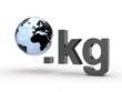 3D Domain kg mit Weltkugel