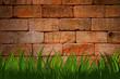 Fototapeten,gras,abbildung,grün,brick wall
