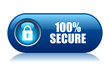 100 Secure Vector Button