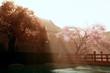 Japanese garden 3D render