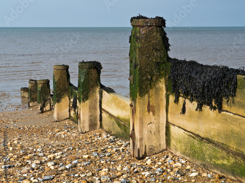 Groynes and Seaweed
