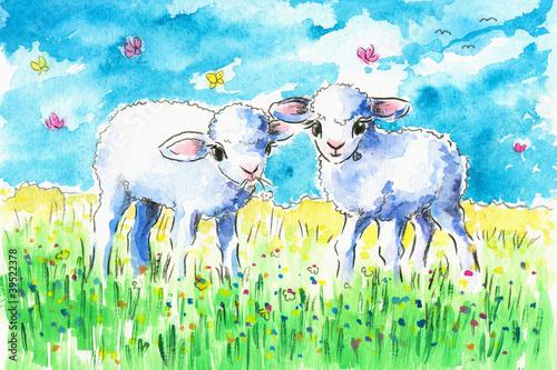 Lambs on a field