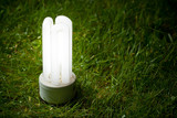 energy saving lamp on the grass