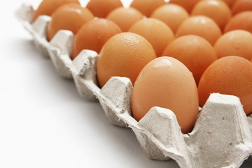 eggs in cardboard container