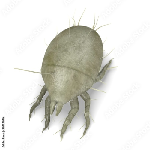 3d render of mite bug