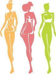 3 Female Body Types