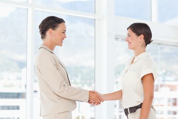 Side view of smiling businesswomen shaking hands