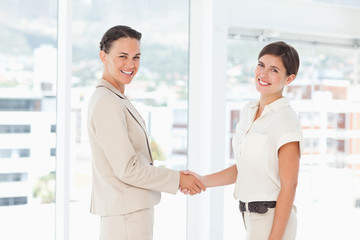 Side view of businesswomen shaking hands next to a window