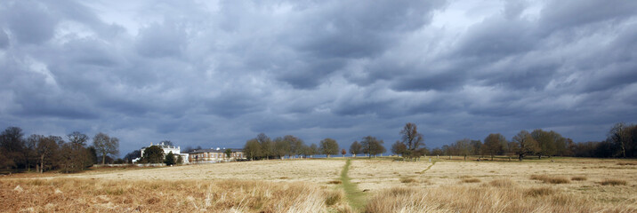 Landscape of Richmond Park