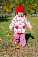 The small beautiful girl in autumn park