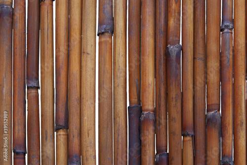 bambusowy-tlo