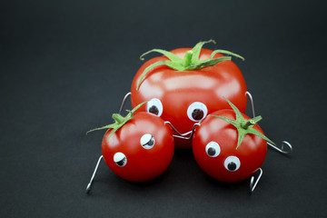 Famille tomate