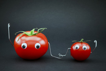 Father and son tomato