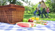Family dancing in a cirlcle in the background with a platter on a picnic basket in the foreground
